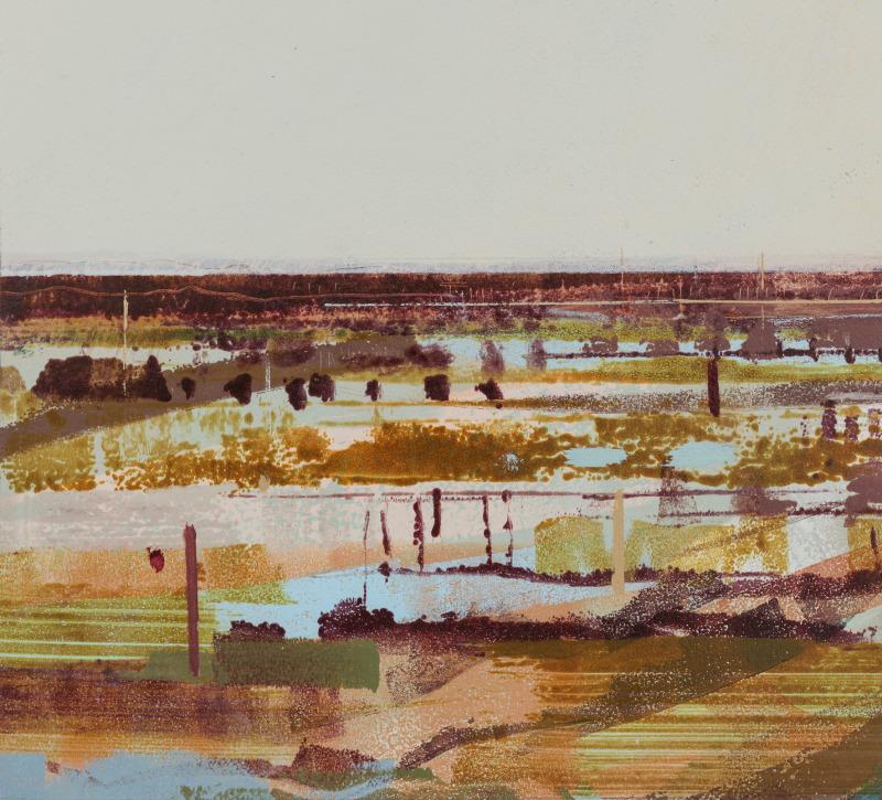 Holkham colour II